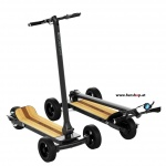 Cycleboard-Elite-wood-red-electric-3-wheel-board-FunShop-vienna-austria-test-buy