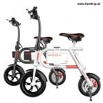 Gruppe: Elektrische Klein-Fahrrräder (E-Bikes)