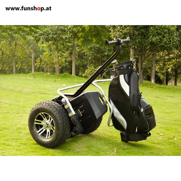 io chic cross golf funshop kingsong evolve sxt ninebot. Black Bedroom Furniture Sets. Home Design Ideas