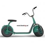 original-scrooser-gruen-elektroscooter-beim-experten-fuer-elektromobilitaet-im-funshop-wien-kaufen-testen-probefahren-und-kaufen