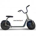 original-scrooser-grau-blau-elektroscooter-beim-experten-fuer-elektromobilitaet-im-funshop-wien-kaufen-testen-probefahren-und-kaufen
