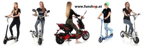 sxt-compact-gekko-light-raptor-100-300-500-1000-xl-eec-im-funshop-wien-testen-und-kaufen