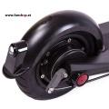 SXT Elektroscooter Buddy schwarz mit Luftreifen Rad hinten beim Experten für Elektromobilität im FunShop Wien testen probefahren und kaufen