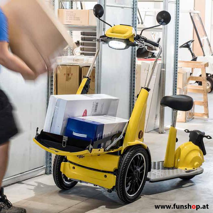 e-transporter-carello-goodyear-ego1-funshop