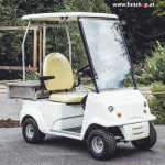 elektrischer-transporter-carello-tr3