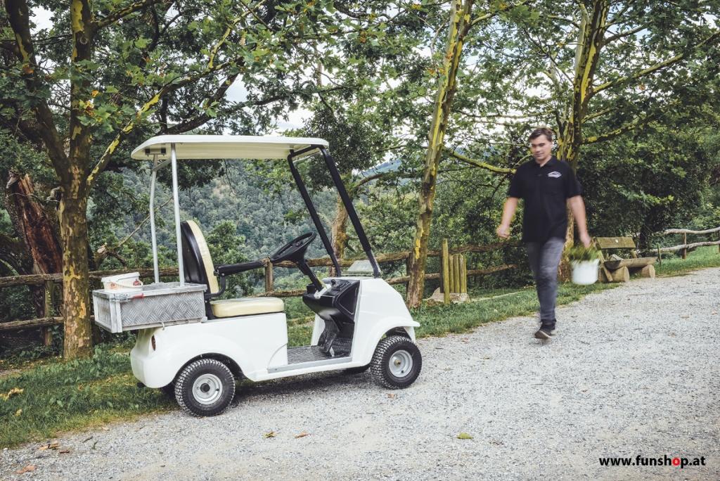 elektrischer-transporter-carello-tr3-funshop-wien