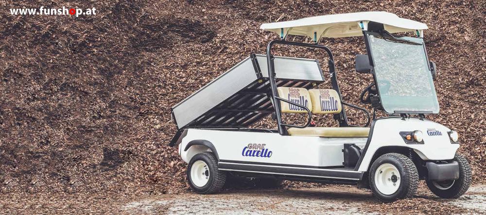 elektrischer-transporter-carello-tr40-zweisitzer-strassenzulassung